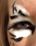 Eye Of The Tiger Stock Image