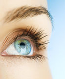 Eye Of Woman Royalty Free Stock Photo