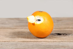 Eye from orange Stock Photography