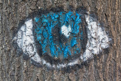 Eye painted on the bark of a tree Royalty Free Stock Image
