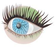 Eye (photorealistic) Stock Photos