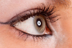 Eye profile Royalty Free Stock Images