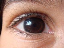 Eye Reflects a Window Stock Image