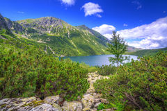 Eye of the Sea lake in Tatra mountains Stock Photography