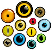 Eye Set Stock Images