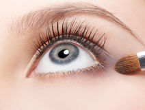 Eye shade makeup Stock Images