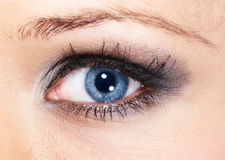 Eye shadow. Female blue eye with silver-gray cosmetic make-up royalty free stock photography