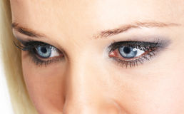 Eye shadow. Female eye with silver-gray cosmetic make-up stock images