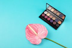 Eye shadow palette and a flower royalty free stock image