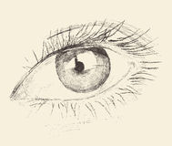 Eye, Sketch, Hand Drawn, Engraved, Illustration Royalty Free Stock Photography