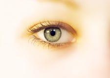 Eye soft. Female eye in soft tone stock photography