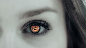 Eye Technology stock video