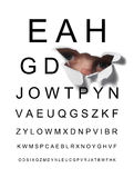 Eye test royalty free stock photography