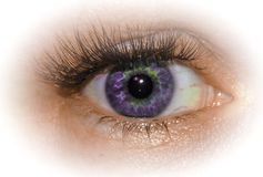 Eye. Unusual and expressive purple eye. royalty free stock photography