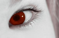 The eye of the vampire. Download this to give someone the evil eye royalty free stock photos