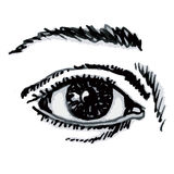 Eye (vector) Stock Images