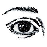 Eye (vector) Stock Images