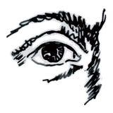 Eye (vector) Imagen de archivo libre de regalías