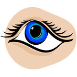 Eye Vector Cartoon detailed Stock Images