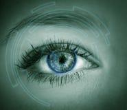 Eye viewing digital information. Royalty Free Stock Photos