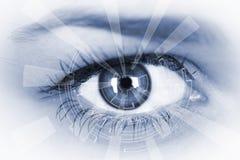 Eye viewing digital information. Stock Photos