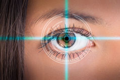 Eye viewing digital information. Stock Photo