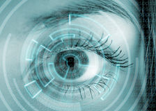 Eye viewing digital information. Royalty Free Stock Images