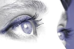 Eye VIII. An image of expressive blue woman's eyes Stock Photo