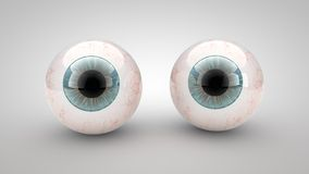 Eye on a white background Stock Photography