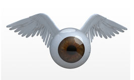 Eye with wings that fly Stock Images