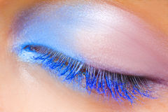 Eye With A Make Up Stock Images