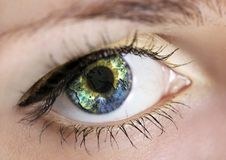 Free Eye With Earth Stock Photo - 11024140