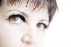 Eye of woman Royalty Free Stock Image