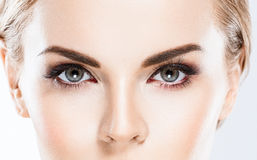 Eye woman eyebrow eyes lashes Royalty Free Stock Image