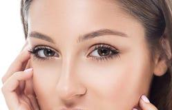 Eye woman eyebrow eyes lashes Stock Photography