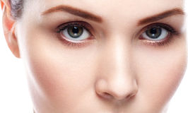 Eye woman eyebrow eyes lashes. Studio shot Royalty Free Stock Photos