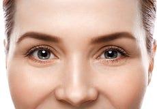 Eye woman eyebrow eyes lashes Stock Images