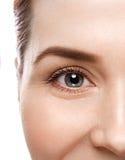 Eye woman eyebrow eyes lashes Stock Photo