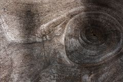 The eye of wood Stock Images