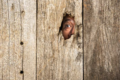 The eye in wooden hole Stock Photo