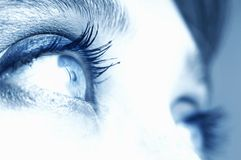 Eye X. An image of expressive blue woman's eyes Royalty Free Stock Photo
