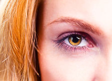 Eye of young beautiful woman Stock Photography