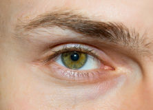 Eye of the young caucasian men Royalty Free Stock Photo