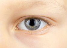 Eye of young child Royalty Free Stock Images