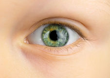 Eye of young child Royalty Free Stock Photo