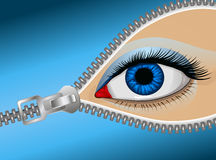 Eye zipper. Eye of the man behind the zipper, vector art illustration covert glance Stock Images