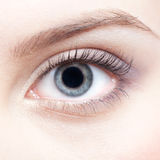 Eye zone make up Royalty Free Stock Image