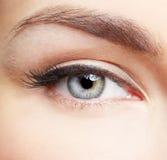 Eye zone makeup Stock Photography