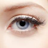 Eye zone makeup Royalty Free Stock Photos