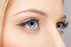 Eye zone makeup Royalty Free Stock Photography